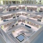 base de datos piso pélvico bibliografia